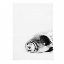 By Nord Håndklæde Smiling Seal