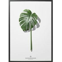 Hagedornhagen Plakat Folium F5