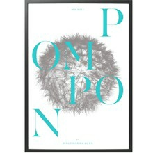 Hagedornhagen Plakat Pompon PP3