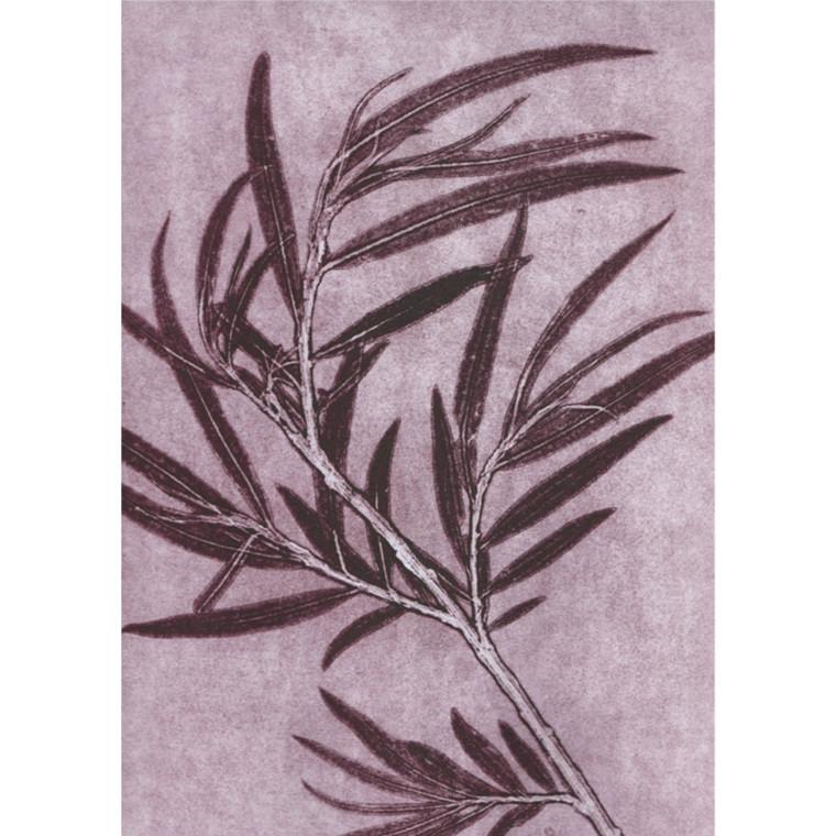 Pernille Folcarelli Postkort Willow