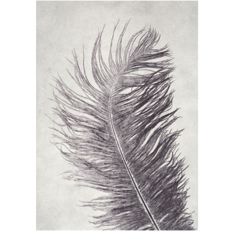Pernille Folcarelli Postkort Feather Grey