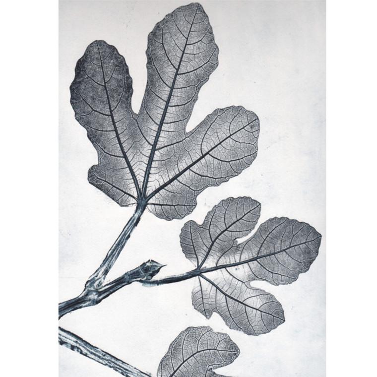 Pernille Folcarelli Postkort Fig Bluegrey