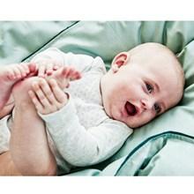 SemiBasic Sengetøj baby Støvet Grøn med grøn kant