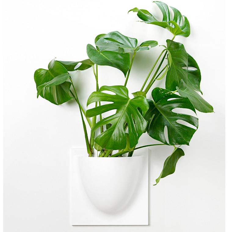 VertiPlants Vægkrukke