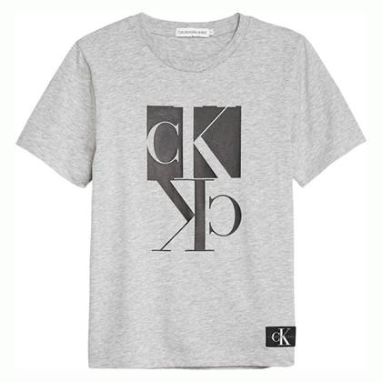 IB0IB00383 Calvin Klein Bae T-shirt GRÅ