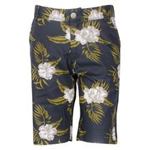 4604371 DWG Josh 371 Shorts SORT