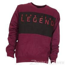 4208232 DWG Nevan 232 Sweatshirt  BORDEAUX