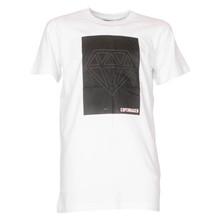 4410002 DWG Alvie 002 T-shirt HVID