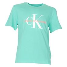 IB0IB00213 Calvin Klein T-shirt GRØN