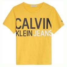 IB0IB00348 Calvin Klein T-shirt  GUL
