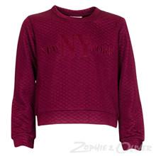 4207827 D-xel Elene 827 Sweatshirt BORDEAUX