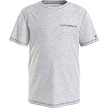 IB0IB00456 Calvin Klein T-shirt GRÅ