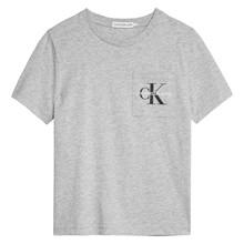 IB0IB00457 Calvin Klein T-shirt GRÅ