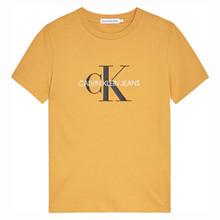 IU0IU00068 Calvin Klein T-shirt GUL