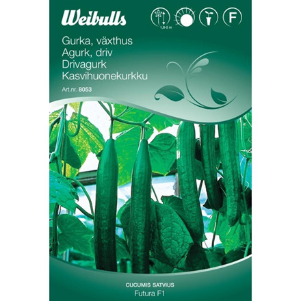 Agurk, driv - Cucumis sativus - Futura F1 - Frø (W8054)