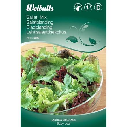Baby Leaf - Lactuca m.m. - Salatblanding - Frø (W8239)