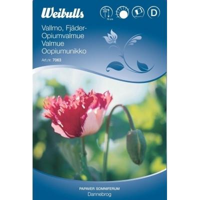 Opiumvalmue - Papaver somniferum - Dannebrog - Frø (W7063)