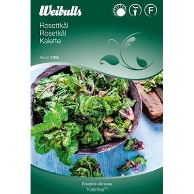 Rosetkål Brassica 'Kalettes'- Frø (W7935)