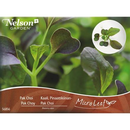 Micro Leaf - Pak Choi - Næringsrige grønne blade.