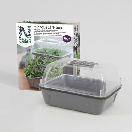 Micro Leaf 1-boks - Til dyrkning af Micro Leaf