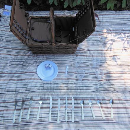 Picnickurv til 4 personer med frostpose. WS16162