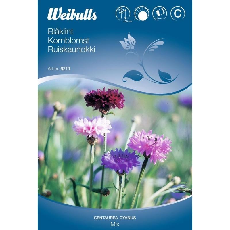 Kornblomst mix - Centaurea cyanus - Mix - Frø (W6211)