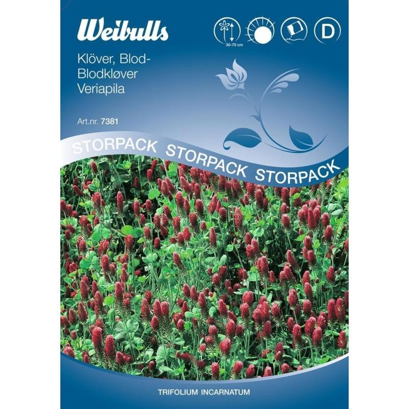Blodkløver - Trifolium incarnatum, Stor pose - Frø (W7381)