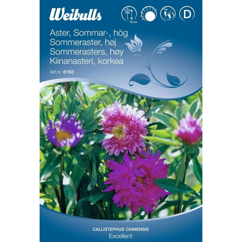 Aster sommer mix - Callistephus chinensis - Excellent - Frø (W6163)
