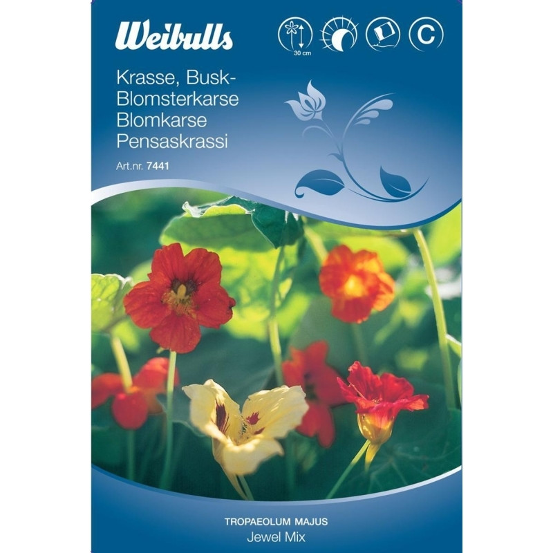 Blomsterkarse, lav mix - Tropaeolum majus Nanum - Frø (W7441)