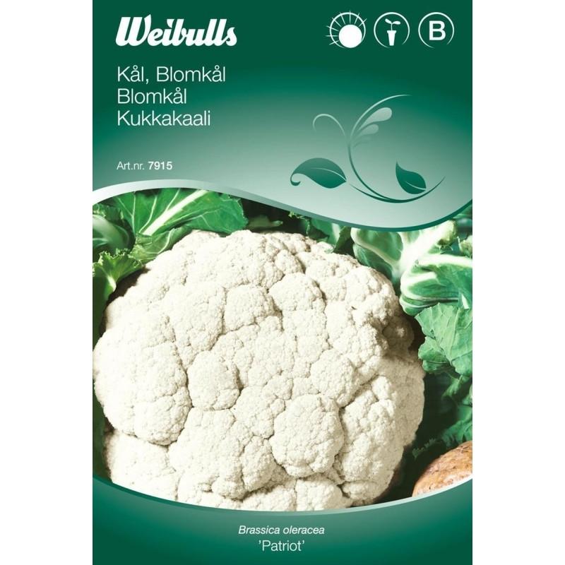 Blomkål - Brassica oleracea - Patriot - Frø (W7913)