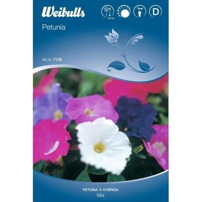 Petunia Småbl. mix - Petunia x hybrida Multiflora - Frø (W7135)
