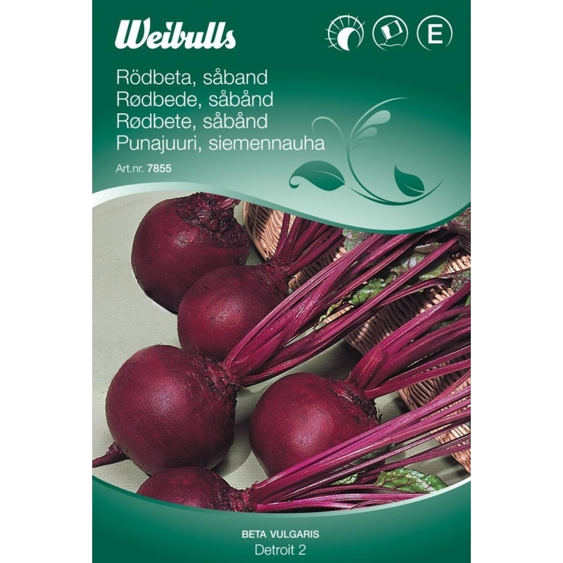 Rødbede - Beta vulgaris - Rubia - Såbånd - Frø (W7855)