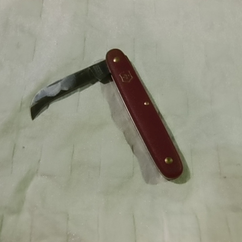 podekniv afrundet blad