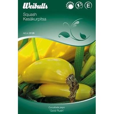 Squash  - Cucurbita pepo - 'Gold Rush' - Frø (W8127)