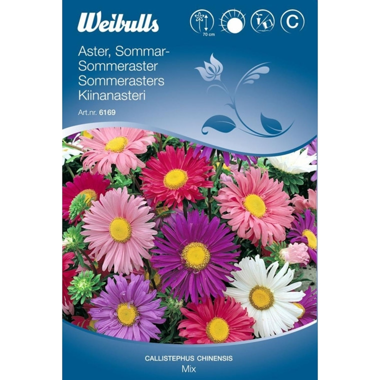 Aster sommer mix - Callistephus chinensis - Mix - Frø (W6169)
