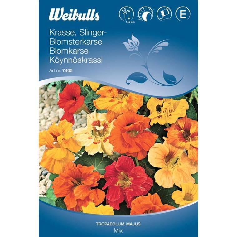 Blomsterkarse, dobbelt bl. - Tropaeolum majus Lobbianum - Frø (W7405)