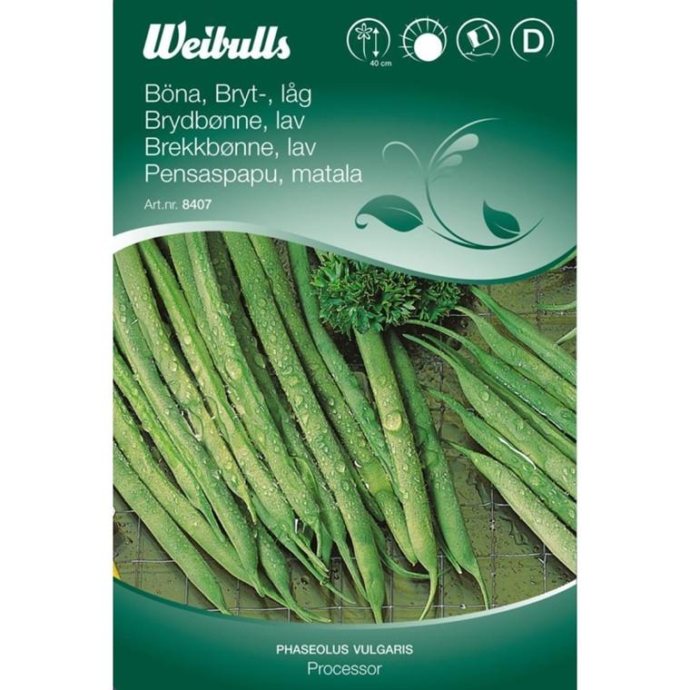 Krybbønne - Phaseolus vulgaris - Processor - Frø (W8409)