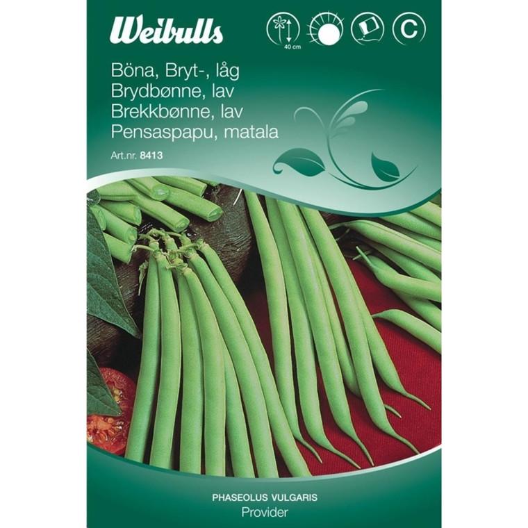 Krybbønne - Phaseolus vulgaris - Provider - Frø (W8414)