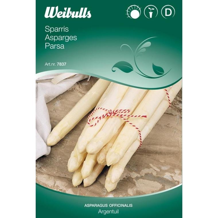 Asparges - Asparagus officinalis - Argentuil - Frø (W7837)