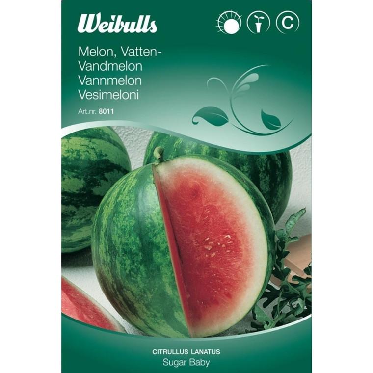 Vandmelon - Citrullus lanatus - Sugar Baby - Frø (W8011)