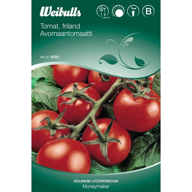 Tomat, frilands - Solanum lycopersicum - Moneymaker - Frø (W8593)