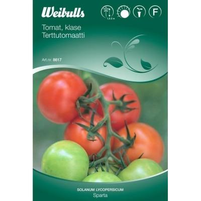 Tomat, Klase - Solanum lycopersicum - Sparta - Frø (W8617)