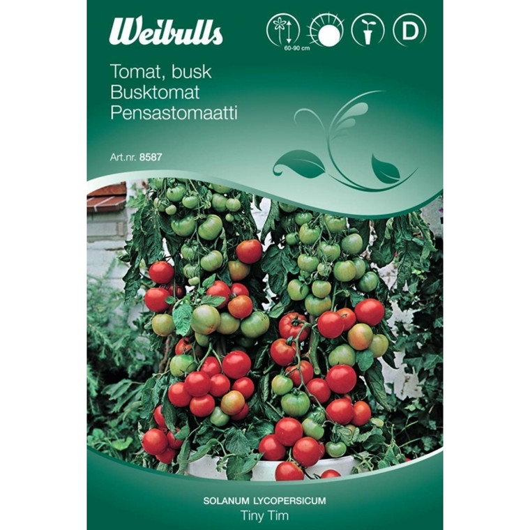 Tomat, busk - Solanum lycopersicum - Tiny Tim - Frø (W8587)