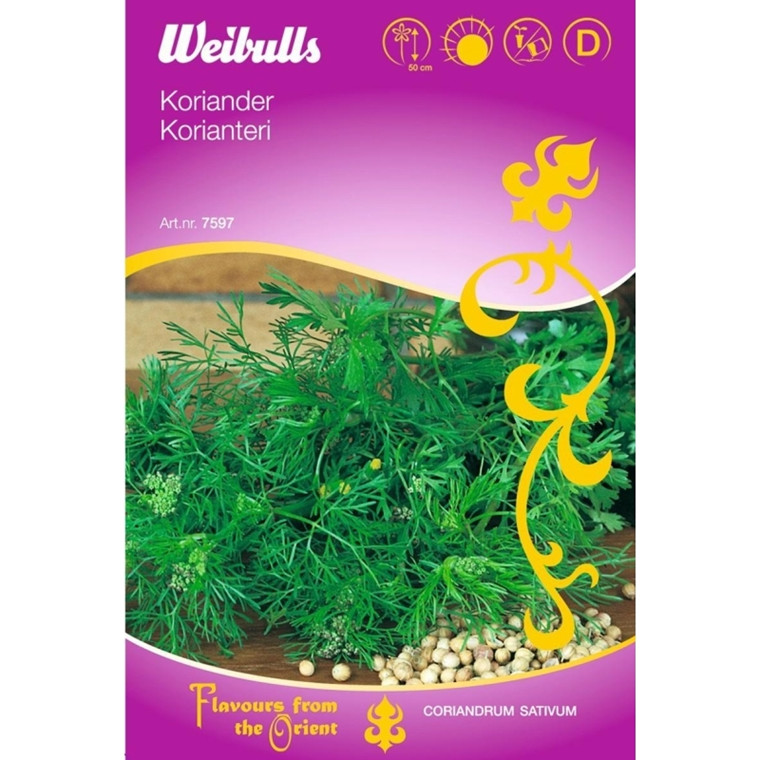 Koriander - Coriandrum sativum ORIENTAL - Frø (W7597)