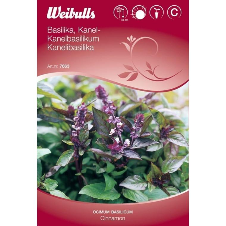 Kanelbasilikum - Ocimum basilicum - Cinnamon - Frø (W7663)