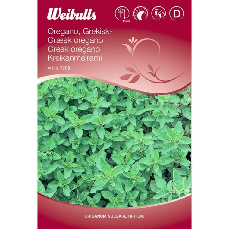 Græsk Oregano, Origanum vulgare ssp.hirtum - Frø (W7705)