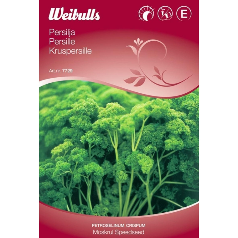 Persille speedseed - Petroselinum crispum - Moskrul Speedseed - Frø (W7730)