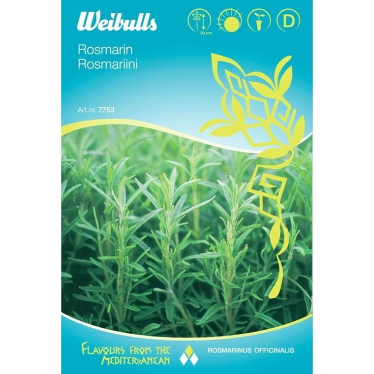 Rosmarin - Rosmarinus officinalis - Frø (W7754)