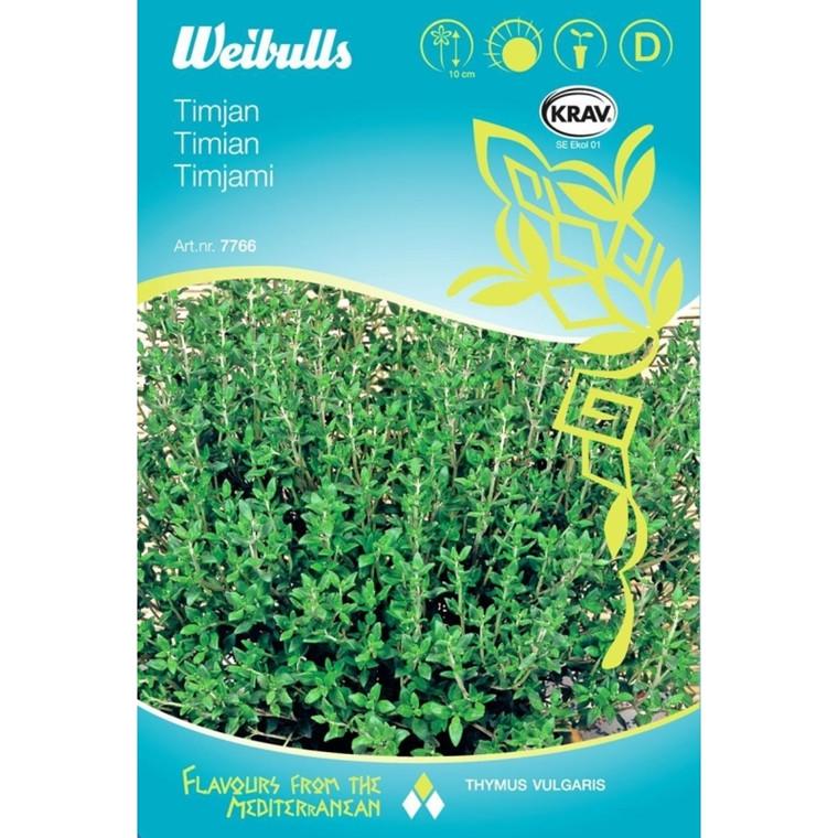 Salvie - Salvia officinalis - Frø (W7759)