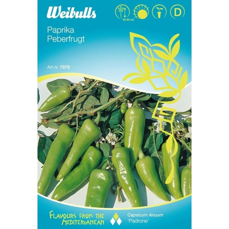 Peberfrugt - Capsicum Anuum - Padrone - Frø (W7977)
